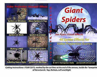 Giant Spiders Halloween Video Projection - Giant Halloween Spiders