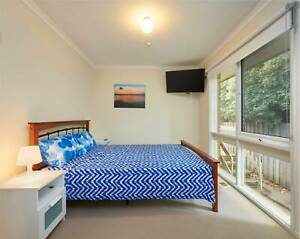 Queen Bed Bright & Light Room for rent