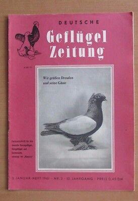DDR Deutsche Geflügelzeitung 1961 Nr.3 Kennsperber Lauf Enten Trommeltaube Fasan