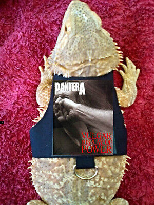 Lil' Bestie Bearded Dragon reptile Harness and Leash PANTERA