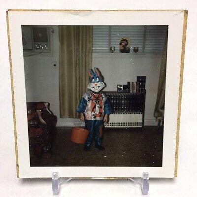 VINTAGE PHOTO POLAROID HALLOWEEN 1971 CHILD IN BUGS BUNNY COSTUME COLLEGEVILLE - Baby Bugs Bunny Halloween