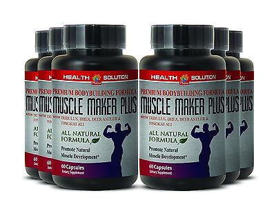 Muscle Development   Muscle Maker Plus   Sexual Health   Lean   6Bot 360Ct
