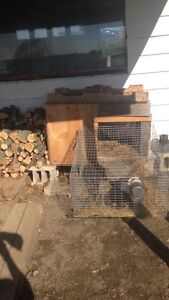 Large rabbit cage with feeder