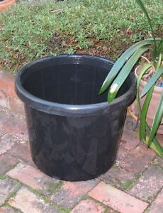 Large back plant pot: 49cm wide x 41cm high. Ivanhoe Banyule Area Preview
