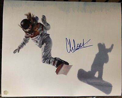 Chloe Kim 2018 Winter Olympics Gold Medal Autographed Authenticated 16x20 Photo for sale  Shipping to Canada