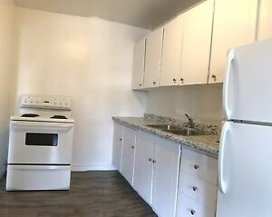 Pet Friendly Building- 1 Bedroom Apartment Available