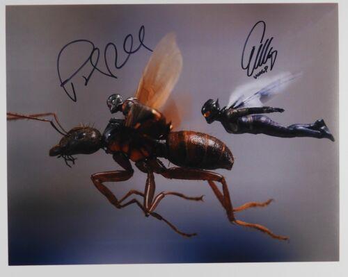 Paul Rudd Evangeline Lilly Antman Wasp Signed Autograph JSA 11 x 14 Photo