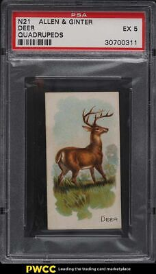 1890 N21 Allen & Ginter Quadrupeds Deer PSA 5 EX