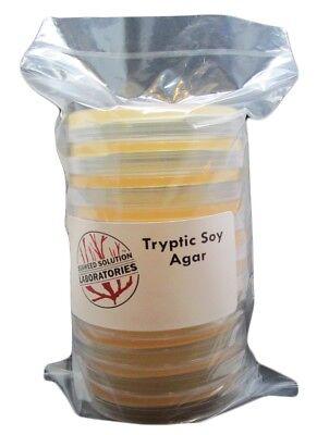 Sterilzed Tryptic Soy Agar, Prepared Media: 10, 100mm x 15mm (Prepared Media)