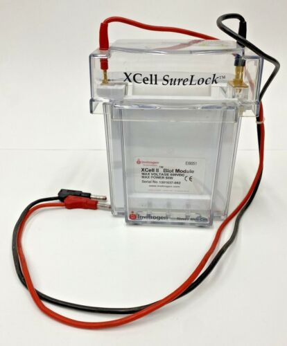 Invitrogen XCell SureLock Novex Electrophoresis Mini-Cell with Buffer Core