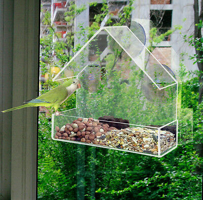 CLEAR GLASS WINDOW VIEWING BIRD FEEDER HOTEL TABLE SEED PEANUT HANGING SUCTION