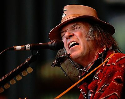 Neil Young 8 x 10 GLOSSY Photo Picture