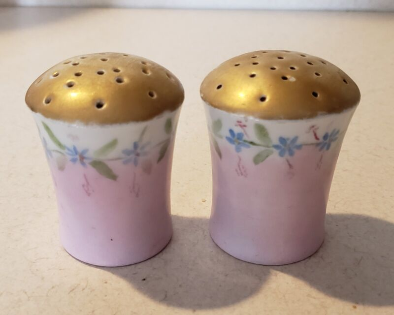 PR. ANTIQUE HUTSCHENREUTHER PORCELAIN SALT & PEPPER SHAKERS!