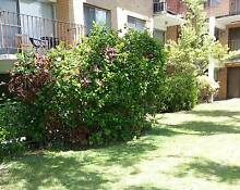 Perth Christmas Accommodation Maylands sleeps 3 - available today Maylands Bayswater Area Preview