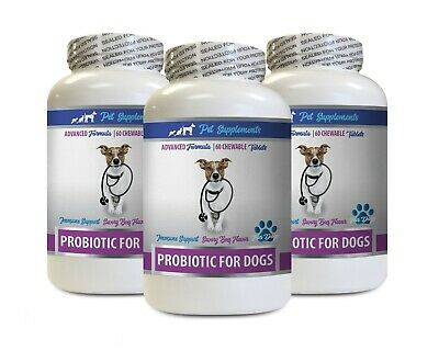 best dog food for bad breath - DOG PROBIOTICS - dog probiotics chewables