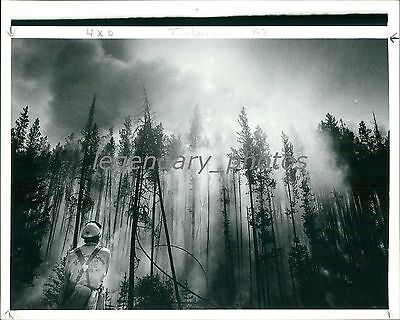 1988 Firefighters Monitor Fire Along Madison River Original News Service Photo