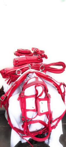 Horse Nylon Harness Shetland Size Red Color White Design Nylon Harness