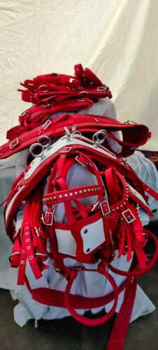Double Horse Nylon Harness Cob Size Horse Red Color Double Harness
