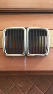 BMW E30 Grill Mooloolaba Maroochydore Area Preview