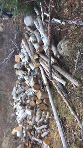 Birch Junks For sale