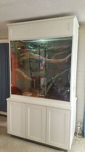 REPTILE ENCLOSURE (Vivarium) - SUPER SIZE! Everything included - Perth Perth City Area Preview