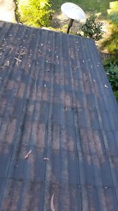 Roof painting services Waitara Hornsby Area Preview