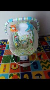Baby Bouncer and Swing