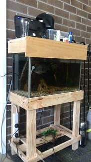 2ft Fish Tank with hood and stand