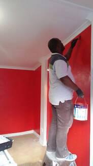 Proffetional Painter