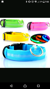 LED DOG COLLARS! REDUCED CLEARANCE !!! Keysborough Greater Dandenong Preview