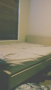 Double bed Helensvale Gold Coast North Preview