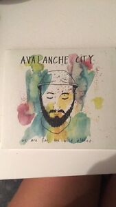 AVALANCHE CITY Liberty Grove Canada Bay Area Preview