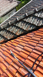 Roof painting services