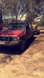 Wanted: WTB First ute