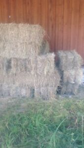 Square bales for sale $10 dollars a pice