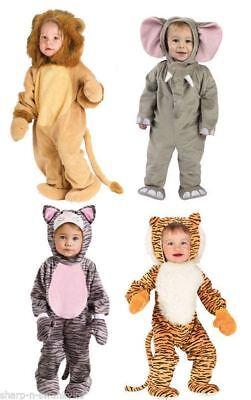 Toddler Animal Costume (Toddler Animal Costumes Baby Zoo Fancy Dress Boy)