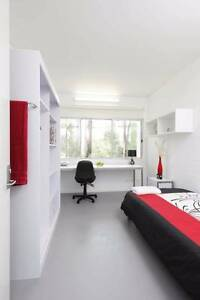 Griffith university village room Southport Gold Coast City Preview