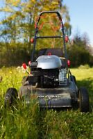 Lawn Cutting for Less