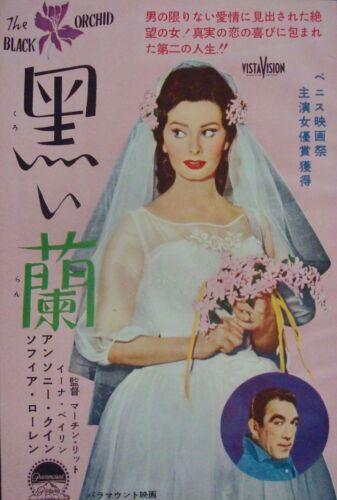 BLACK ORCHID / SITTING BULL Japanese Ad movie poster SOPHIA LOREN 1959