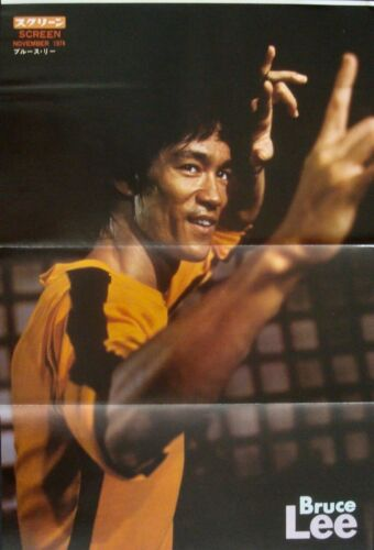 BRUCE LEE Japanese Personality movie poster 1974 NM 11x16 GAME OF DEATH