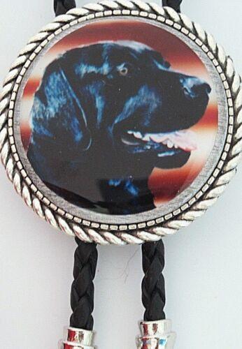 Labrador Retriever Lab Dog Classic Bolo Tie