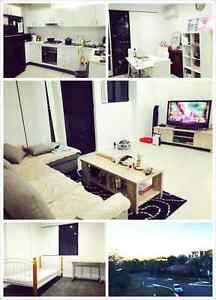 Telopea Single room great view Dundas Parramatta Area Preview
