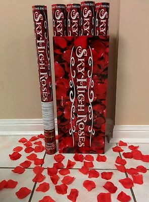 New Years Party Poppers (30 Wedding Popper Cannon Rose Confetti New Years Surprise Party Valentines)