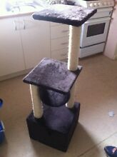 Cat scratching pole Craigieburn Hume Area Preview