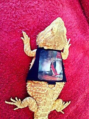 Lil' Bestie Bearded Dragon reptile Harness and Leash OZZY OSBOURNE