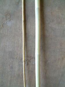 5 x 1metre BAMBOO POLES 38/42mm Diameter
