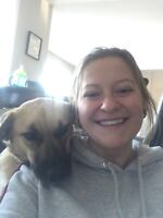Experienced pet sitter for hire