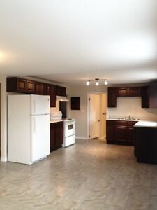 NORTH- Completely renovated units available immediately! $575