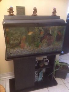 Fish tank (25 gallons)