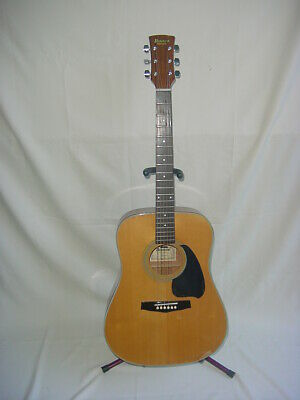 Ibanez Performance PF10 Acoustic Guitar